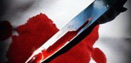 قتل فردین به خاطر دعوای تلگرامی