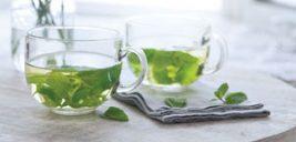 دمنوش نعنا تازه بهترین نوشیدنی برای رفع عطش در تابستان