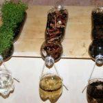 ایده های خلاقانه برای ساخت کاردستی با بطری خالی