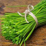 با خواص گیاه تره برای حفظ سلامتی خود آشنا شوید!