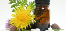 با انواع مسکن های گیاهی و طبیعی فوق العاده طب سنتی آشنا شوید