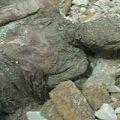 آیا جسد مومیایی در اطراف حرم حضرت عبدالعظیم قابل شناسایی است؟