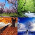 فال فصل ها و رنگ ها