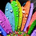 شخصیت شناسی آدم ها از رنگ مناسب ماه تولدشان !