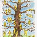 تست جالب یپ ویلسون ، جایگاه شما بر روی درخت کجاست؟ +عکس