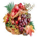 میوه ای مفید که باعث بهبود توجه و تمرکز در کودکان میشود!