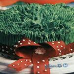کیک اسفنجی به شکل سبزه هفت سین