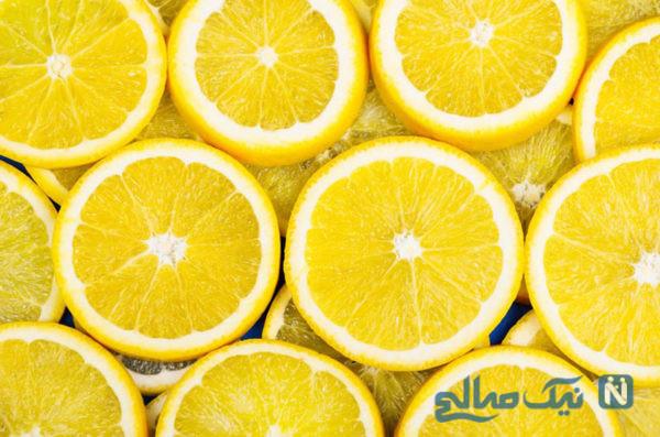موس لیمو