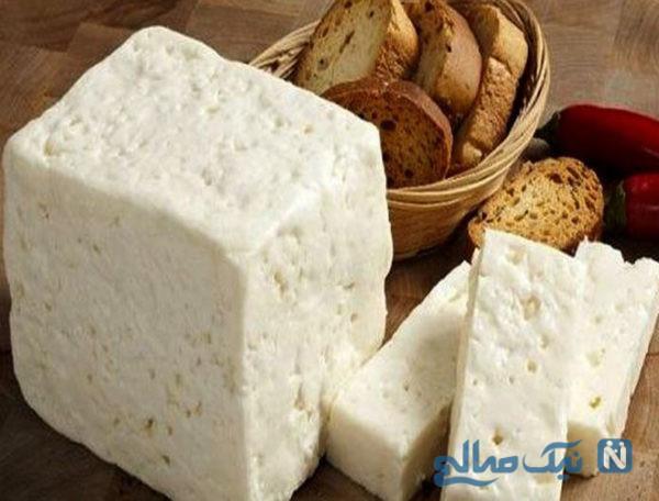 نان شکم پر با پنیر و گردو