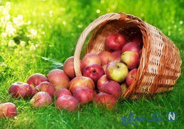 تارت سیب