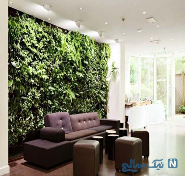 طبیعت در فضای داخلی خانه