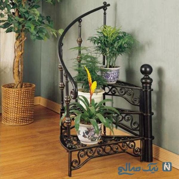 چیدمان گل و گیاه در آپارتمان