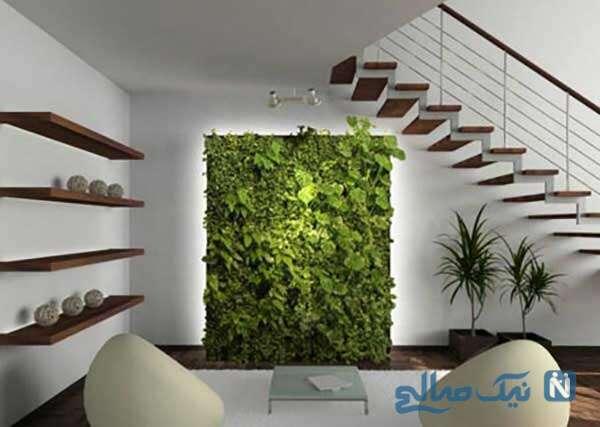 استفاده از رنگ سبز در اشپزخانه
