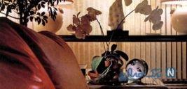 دکوراسیون آپارتمان خصوصیِ سوفیا لورن، مشهور ترین بازیگر ایتالیایی +تصاویر