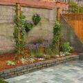 گل ها و زیبایی خیره کننده آنها بر دیوار ساختمان ها