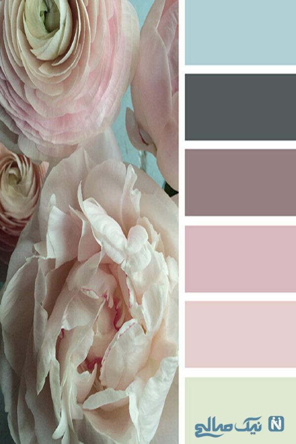 ترکیب هایی از رنگ های طبیعت در خانه