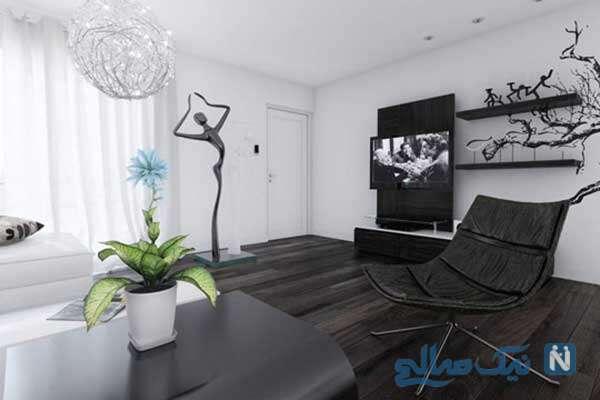 جذاییت خانه با استفاده از رنگهای متضاد سفید و سیاه