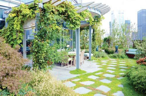 پشت بام خانه خود را بهاری کنید/ فضای سبزرا در دکوراسیون آپارتمان بیاورید+تصاویر