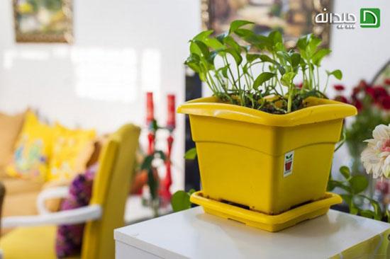 دکوراسیون زرد و پاییزی خاص را با این ایده جذاب طراحی کنید تصاویر