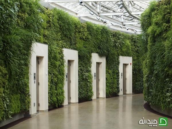 باغچه های عمودی با طراحی حیرت انگیزشان در داخل خانه +تصاویر
