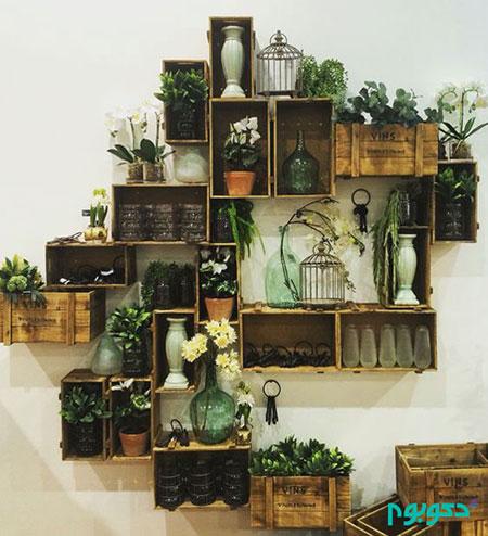 گیاهان روح نواز برای خانه +تصاویر