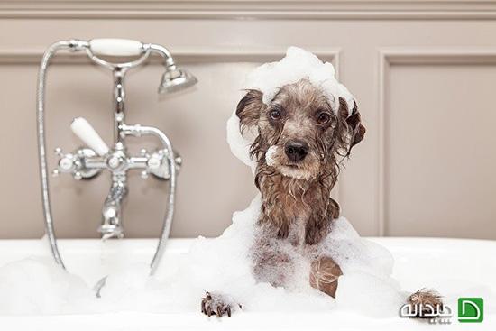 نکاتی دربارهی «نصب وان حمام»