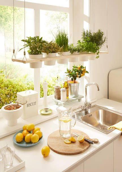 تزیین آشپزخانه با گل و گلدان
