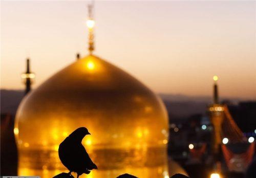 توصیه امام رضا