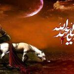سرنوشت ذوالجناح اسب با وفای سیدالشهداء چه شد؟