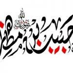شهدای کربلا حبیب بن مظاهر ، پیر میدان دار عشق