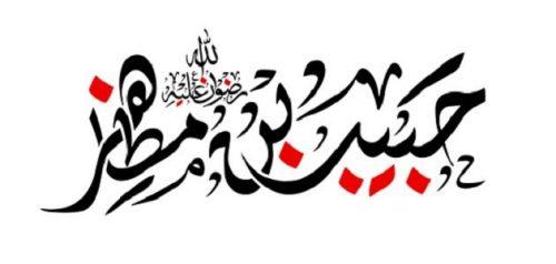 حبیب بن مظاهر