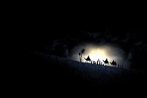 چرا امام حسین (ع) همراه با خانواده به کربلا رفتند؟