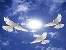 آیا «روح» هم شب و روز دارد؟