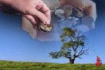پول کنار گذاشته شده برای صدقه را میتوان جابجا کرد؟