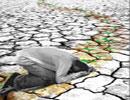 عامل از بین برنده غم و اندوه و درمان افسردگی
