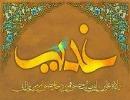 فضیلت زیارت غدیریّه امام هادی(ع) از نگاه بزرگان