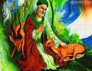 در مورد زندگی امام علی بن موسیالرضا علیهالسلام، چه می دانید؟