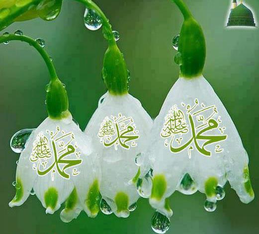 پیامبر اسلام و شادابی همیشگی در چهره ایشان در هنگام دیدار یاران