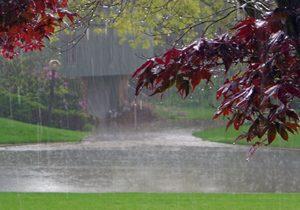 استجابت دعا در هنگام باران