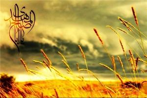 وقایع شگفت در هنگام ظهور مهدی (عج)