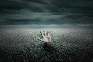 چه کسانی بزرگترین حسرت در روز قیامت را خواهند داشت