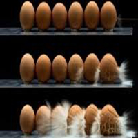 عرضه تخم مرغ غیربهداشتی در تهران و شمال