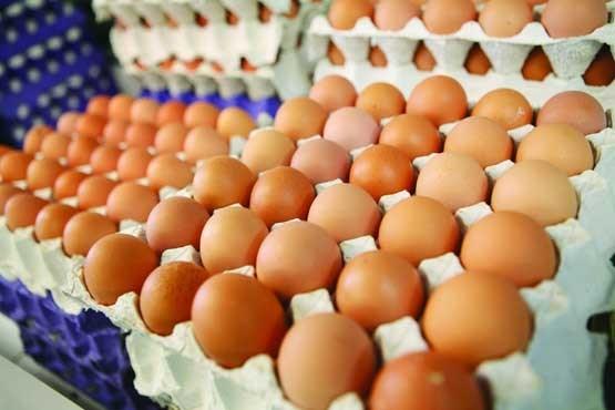 توزیع تخم مرغهای غیرمجاز