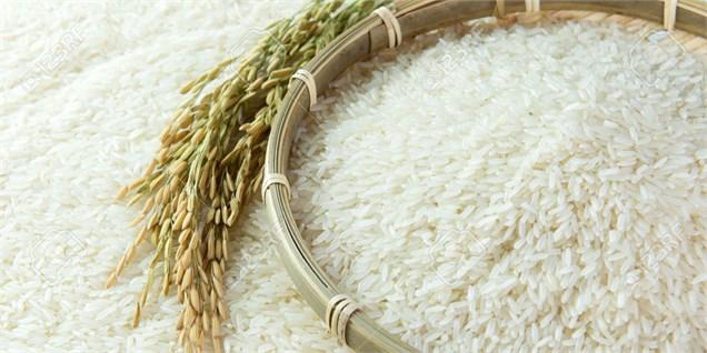 کمبود و گرانی برنج در بازار