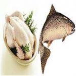 نرخ جدید مرغ و انواع مشتقات آن در بازار + قیمت مرغ و ماهی