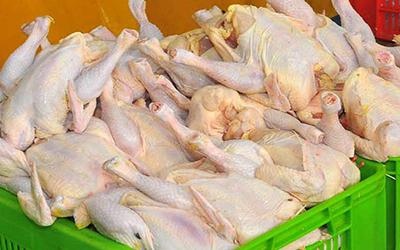 نرخ جدید مرغ و انواع مشتقات آن