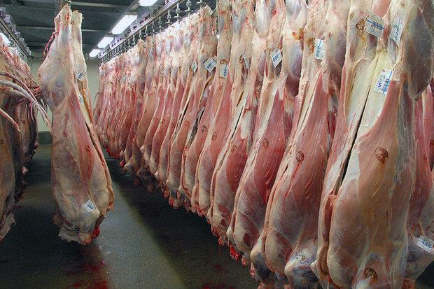 افزایش قیمت گوشت گوسفندی