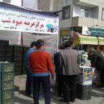 زمان آغاز توزیع میوه تنظیم بازاری برای شب عید
