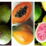 فروش میوههای خارجی ۲۵۰ هزار تومانی در ایران!