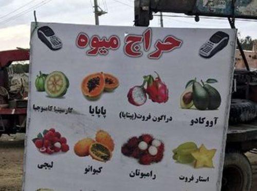 فروش میوههای خارجی